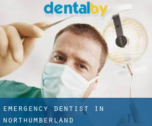 Emergency Dentist in Northumberland