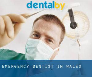 Emergency Dentist in Wales
