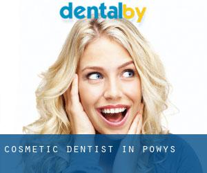 Cosmetic Dentist in Powys