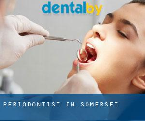 Periodontist in Somerset