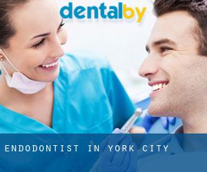 Endodontist in York City